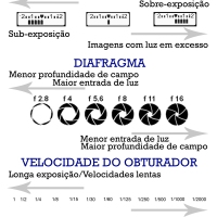 5 Tabelas Fotográficas MEF